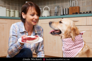 Owner Spoiling Pet Dog With Meal Of Fresh Steak