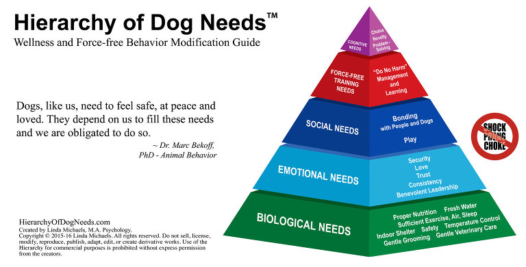 Hierarchy of Dog Needs Linda Michaels MA Del Mar Dog Training
