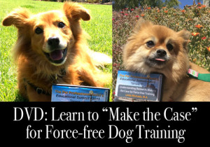dvd dog trainer make the case for force free dog training ppg linda michaels ma del mar dog training