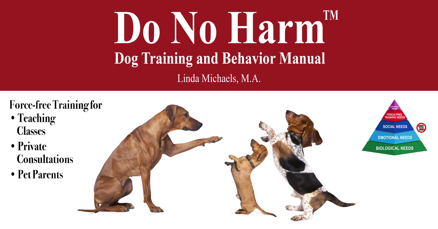 how to become an animal behavior trainer